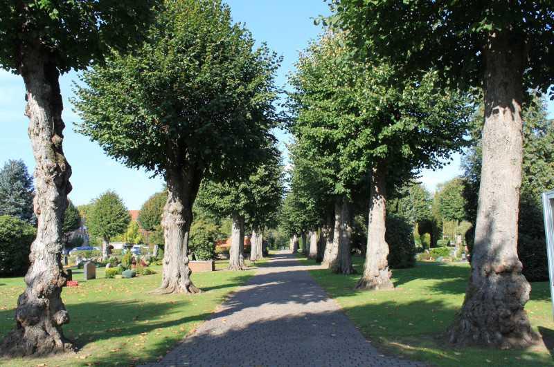 Friedhof01